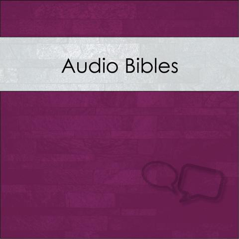 How can I access audio Bibles?