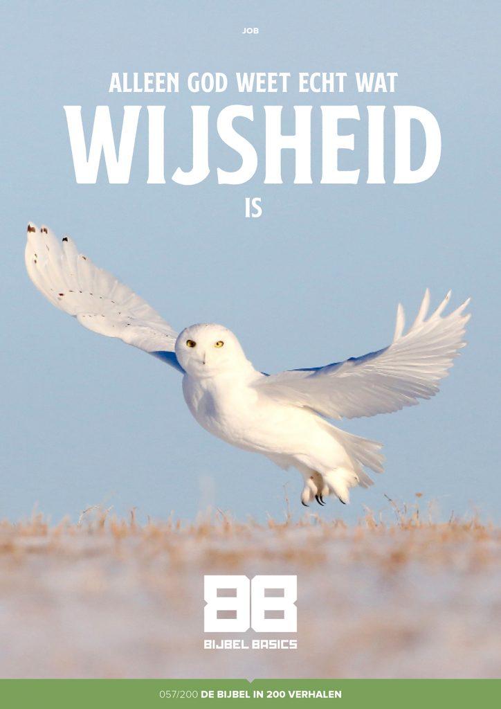 Alleen God weet echt wat wijsheid is