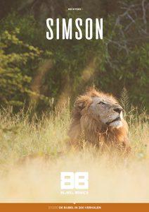 Rechter Simson
